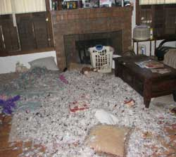 After the pillow disaster